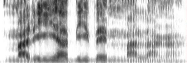 myegoo_espectrogramamariaviveenmalaga_s